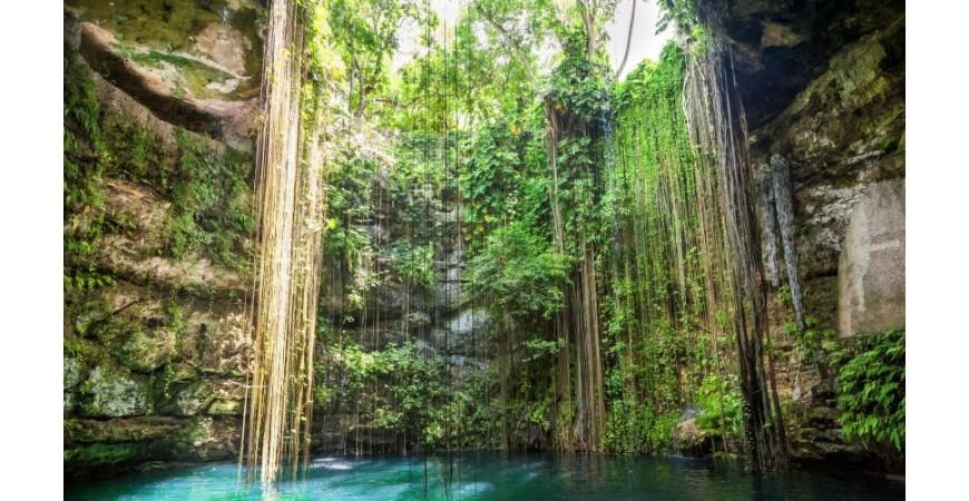 Grotte du Tapir, Cénote du Yucatan