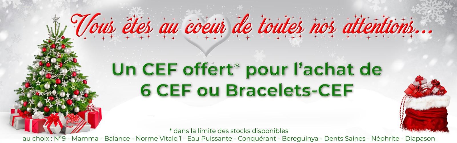 Un CEF offert pour l'achat de 6 CEF ou Bracelets-CEF