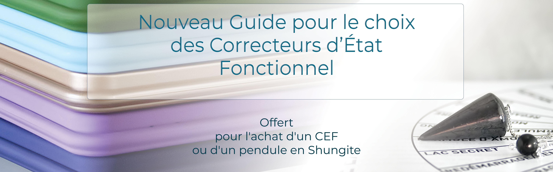 Nouveau Guide pour le choix des CEF